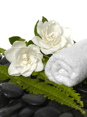towel with green fern and gardenia flowers on black stones