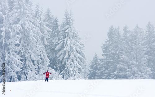 winterlandschaft skifahrer