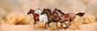 Leinwandbild Motiv Herd gallops in the sand storm