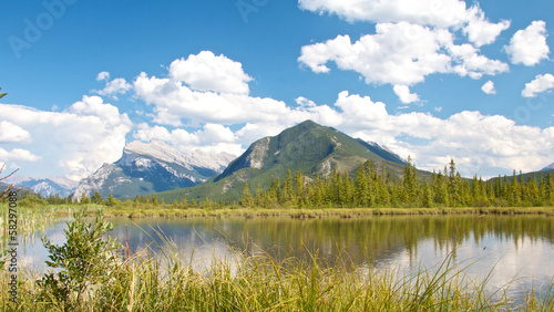 Vermillion Lakes behind grass