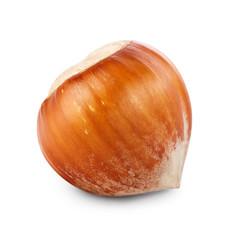 Filbert nut