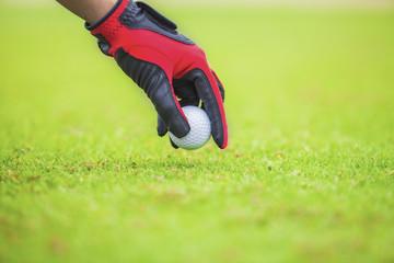 put the golf ball