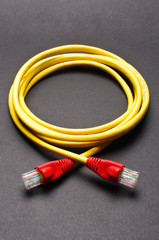Yellow - red LAN cable