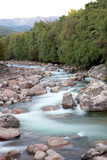 Nice river with clear water flowing