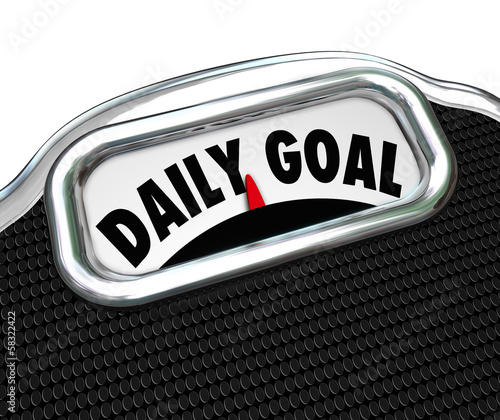 Daily Goal Scale Weight Loss Diet Plan