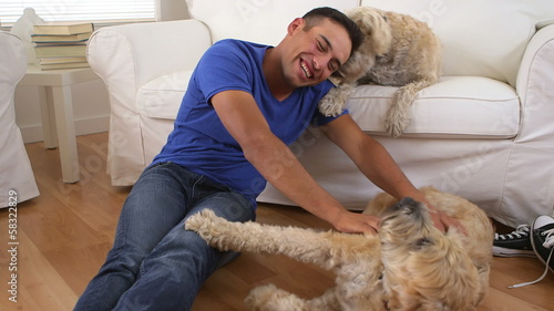 Mexican man playing with wheaten terriers