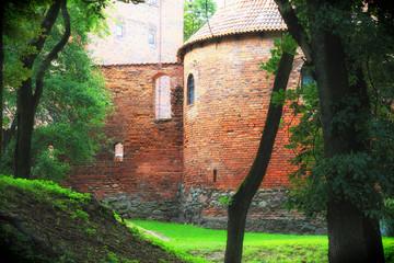 Poland old castle Nidzica