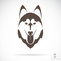 Vector image of an dog siberian husky