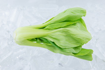 Bok Choy on ice