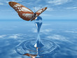 the butterfly and the drop of water