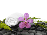 roller towel with green fern and pink orchid on pebbles