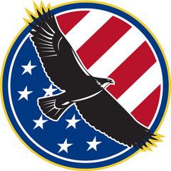 American Eagle Flying USA Flag Retro