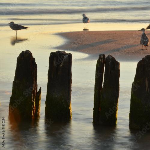 poranek na plaży © Pio Si