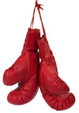 Close-up of a pair of boxing gloves