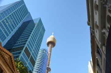 Skyscrapers and Sydney tower on the background of blue sky.