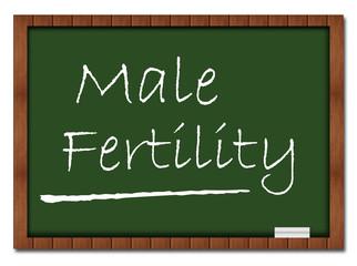 Male Fertility - Classroom Board
