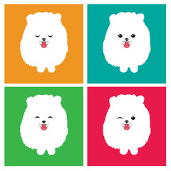 Vector image of an dog  pomeranian