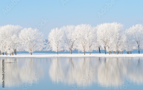 Foto op Aluminium Rivier winter landscape with beautiful reflection in the water