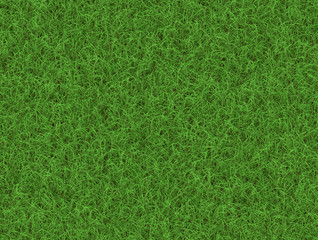 lush green grass texture. wallpapers pattern