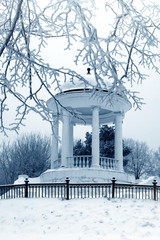 Winter season in city