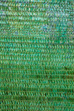 Background of a green plastic awning used as a sunshade.