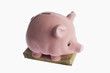 Piggy bank on a bundle of currency notes