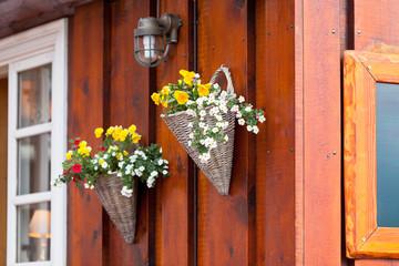 Flowers in wicker pots on a icelandic wooden house