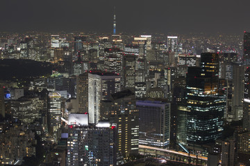 Dense buildings in Tokyo Japan with Tokyo Sky tree