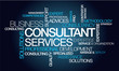 Consultant services professional training word tag cloud