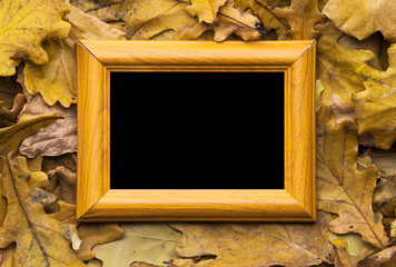 leaves and photo frame