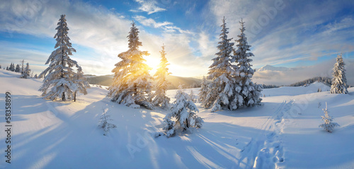 Poster Bossen Morning panorama of mountains