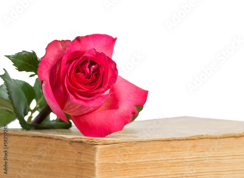 Old book and rose