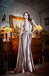 Young beautiful luxurious woman in long elegant dress. Beautiful