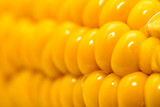 corn as a backdrop. macro