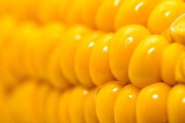 corn as a backdrop. macro