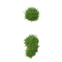 Punctuation mark made of grass