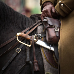 Close-up harness and saber at Polish cavalry.