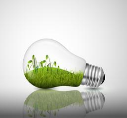 Light bulb with grass inside
