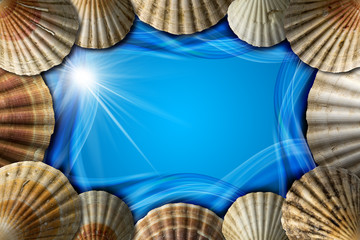 Seashells on Sea Abstract Background