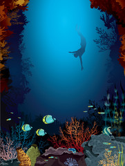 Coral reef and freediver.