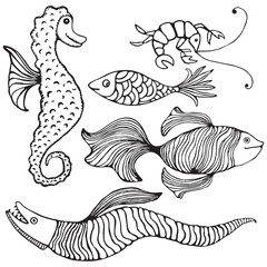 Collection of 5 hand drawn fishes