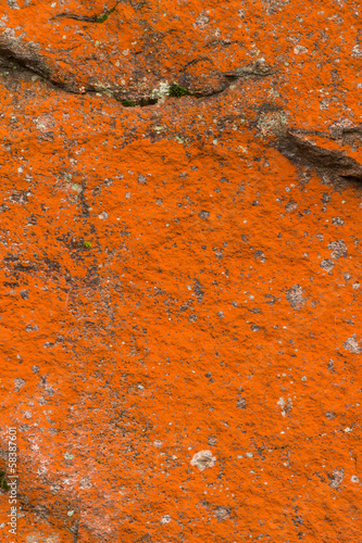 Abstract rocks closeup with various red lichens