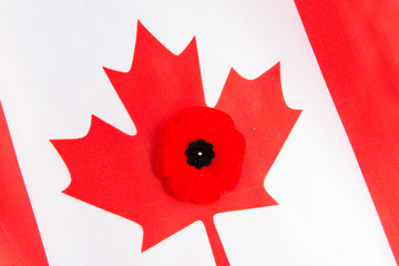 Canadian Flag and Red Poppy