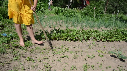 Barefoot woman in yellow dress grub weeds with hoe in garden