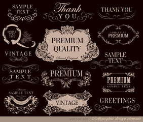 vector set: calligraphic