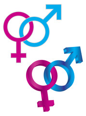 Male and Female Gender Symbol Intertwined Vector Illustration
