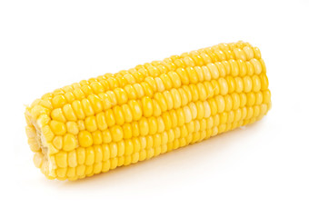 corn cob close-up on white background