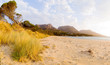 Fototapeten,tasmanien,australien,landschaft,panorama