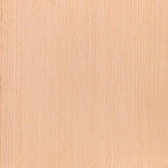texture white beech , wooden background