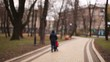 A woman with a baby carriage in the autumn park. Blurred